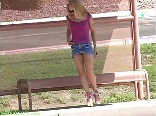 flashing, hitchhiker, nude, public
